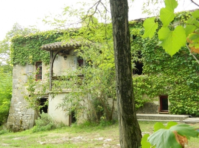 19th century farmhouse with gites, outbuildings, swimming pool and 3.3ha